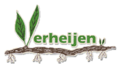 Logo Verheijenplants